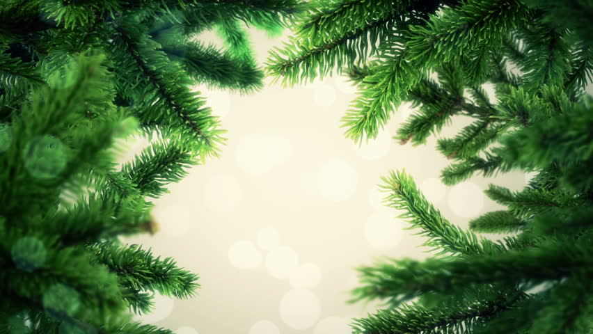 Animation Slow Waving Of Fir Tree Branches Abstract Background For Christmas Holidays Or New Year Seamless Loop