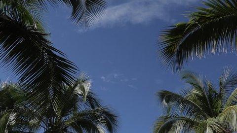Beach Scene, Nuevo Vallarta, Nayarit, Puerto Vallarta, Mexico, North America