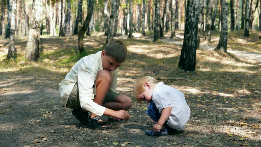 Toddler baby with teen boy, brother playing in dust on the road in the  forest, park with birches. Two brothers - teen and kid baby, love and  harmony in ...