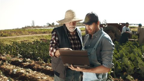 4k wide shot of farming father and son checking on production progress with laptop computer and wifi connection.
