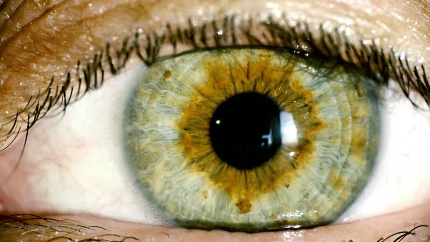 Close ups видео хд
