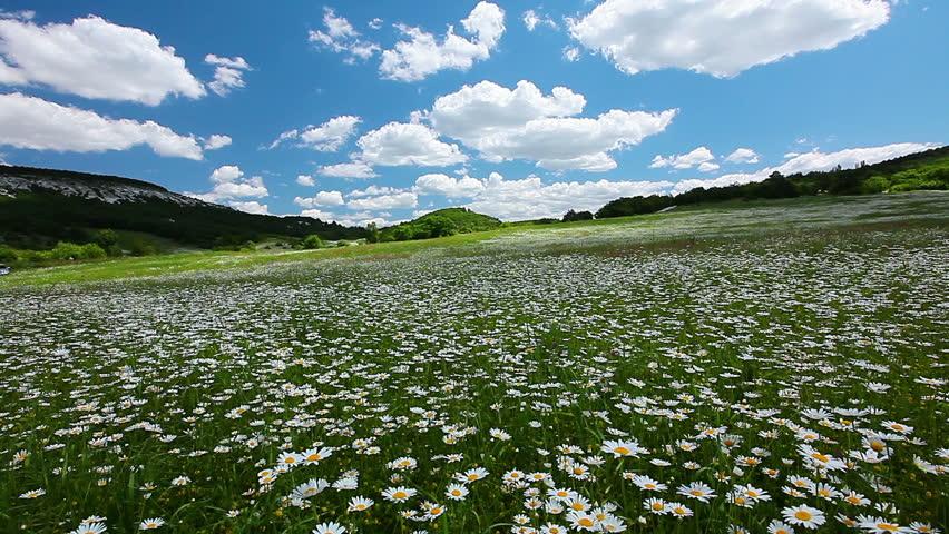 Stock video of summer landscape timelapse 1220719 shutterstock mightylinksfo