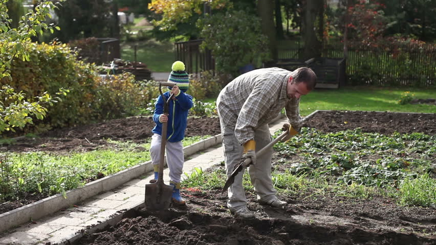Father and son, digging and shoveling in the garden autumn time, father showing his young boy how to work in backyard