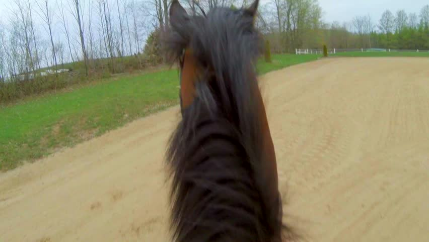First Person View of Horseback Riding in Sand ring