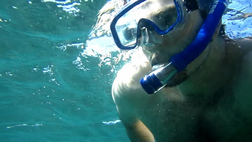 A man snorkels in the waters of the Galapagos Islands