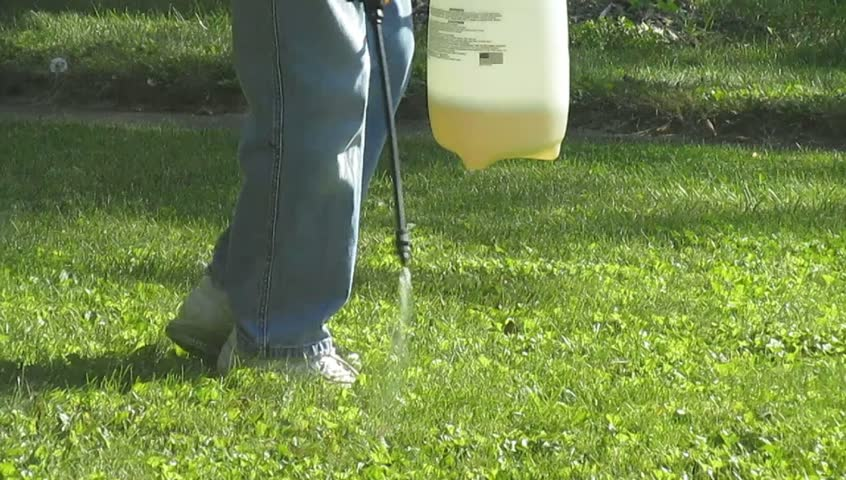 Spraying Weed Control Solution onto Lawn  | Shutterstock HD Video #12915407