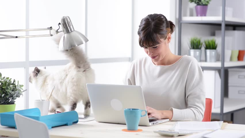 Woman working at home with a laptop and cuddling her beautiful long hair cat on the desk