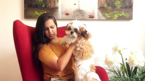 Young brazilian woman sitting in armchair playing with her dog