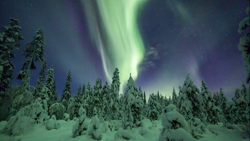 Aurora Borealis (Northern lights) above a snowy forest in lappland   Shutterstock HD Video #13482083