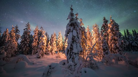 Aurora Borealis (Northern lights) above a camp fire in a snowy forest in Lappland
