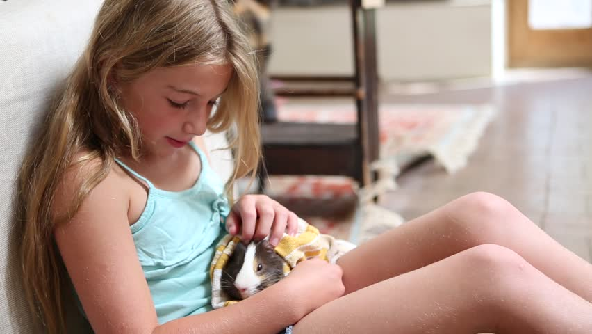 Pre-Teen Girl Holding Pet Hamster Stock Footage Video 100 -8318