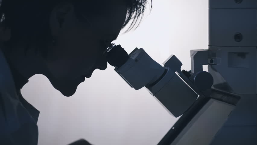 Silhouette of a female researcher looking through a microscope.   Shutterstock HD Video #13597079