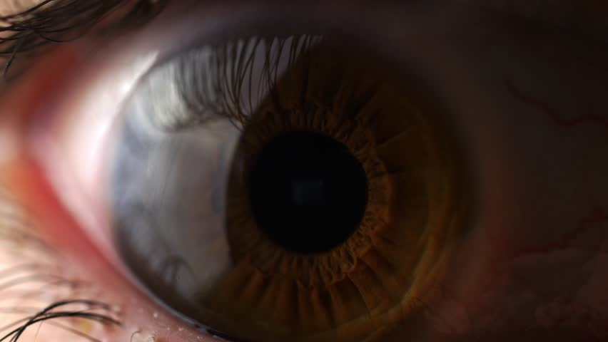 MONTREAL, CANADA - December 2015 : Timelapse of Internet pages overlay with a closeup of an eye.