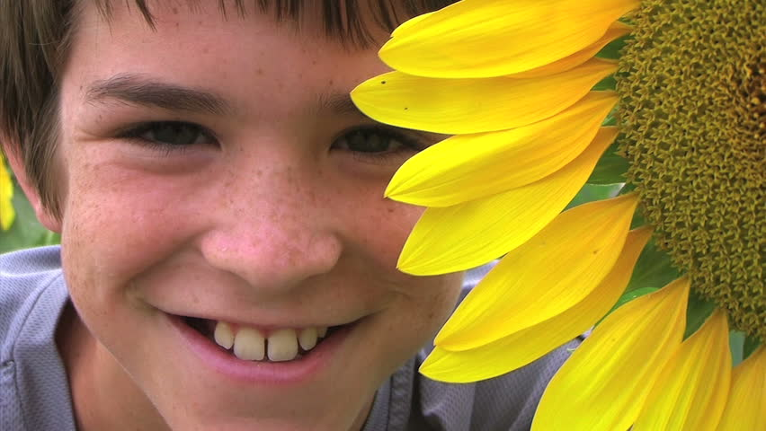 Boy Beside Sunflower