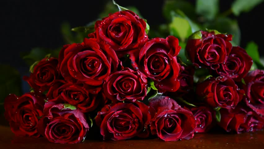 1920x1080 light dark pink red roses rotate reveal - Bouquet of red roses hd images ...
