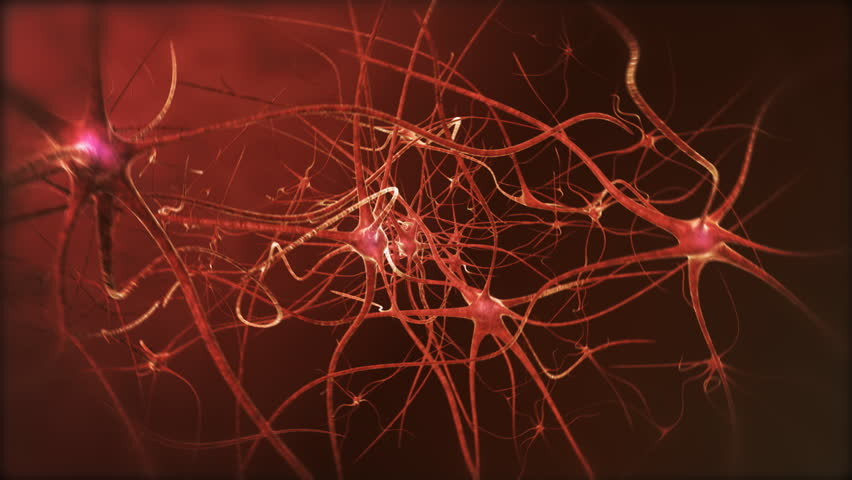 Neuron network. Neurons structure sending electric impulses and communicating each other. 3D animation. Looping.