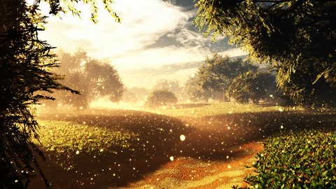 Amazing Natural Wonderland with Fireflies in the Sunset Sunrise 3D Animation with cinematic camera motion
