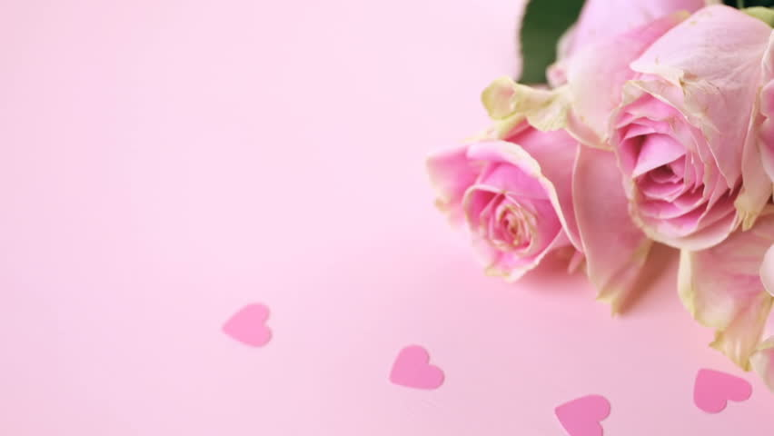Wallpaper Design For Spa : Light pink tulips on a background stock footage