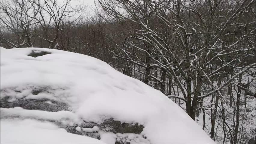 Winter snow falling rock trees | Shutterstock HD Video #14486251