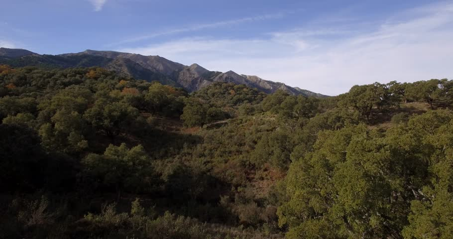 4K Aerial, Andalusian Landscapes, Spain - Shot is additionally stabilized, graded and mostly accelerated.  | Shutterstock HD Video #14620849
