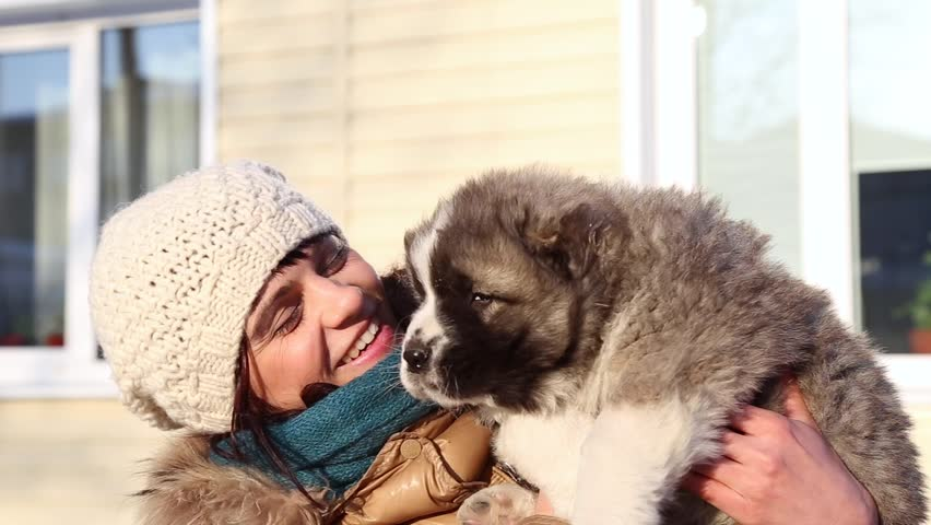 A happy young women hugging a puppy outdoor in winter. A caucasian shepherd dog.  | Shutterstock HD Video #14842219