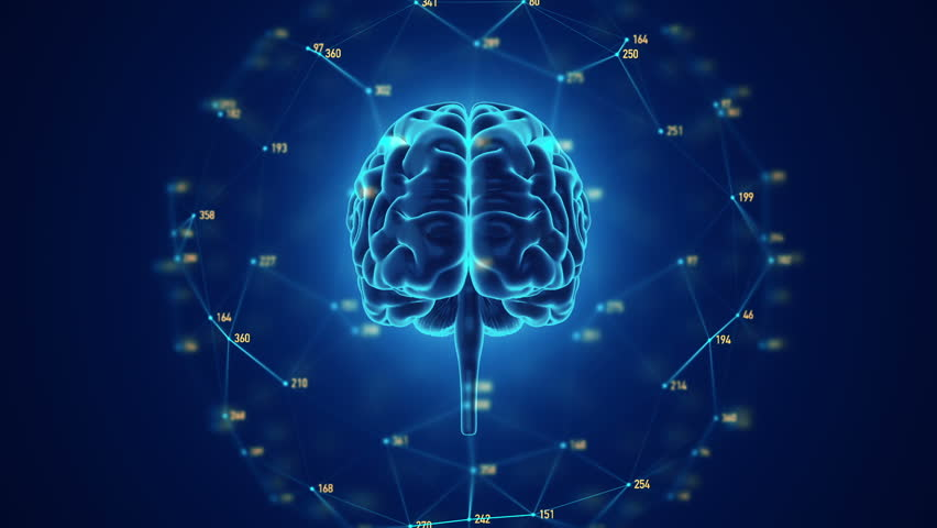 Abstract background with animation of rotation Human brain with net of data from numbers around. Backdrop of science or social technology. Animation of seamless loop. | Shutterstock HD Video #14884969