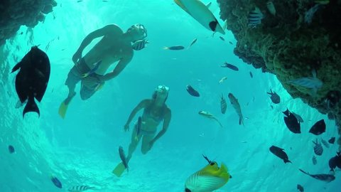 SLOW MOTION CLOSE UP UNDERWATER: Young couple, man and woman on romantic honeymoon diving, snorkeling and swimming underwater in beautiful lagoon, exploring tropical reef with exotic fish