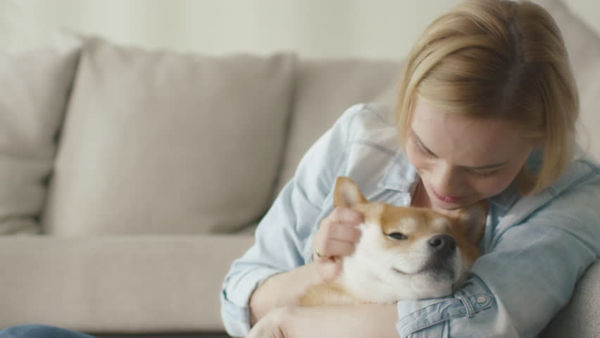 Happy blond woman is playing with pet dog at home...