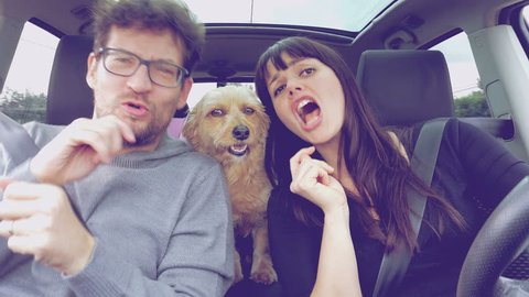 Happy couple dancing driving in car with dog  4K