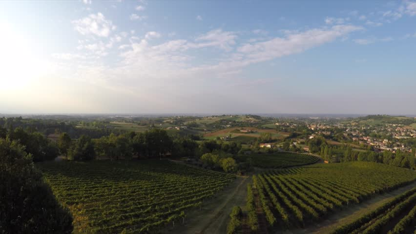 Aerial view of Italian countryside with vineyard of Lambrusco wine. Italy