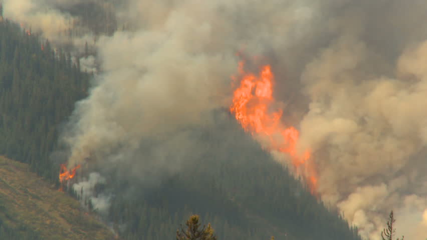 forest fire helicopter thru frame