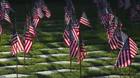Memorial Day Veteran's Cemetery with flags