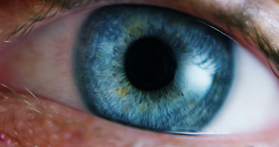 Close-up Macro Shot of male Human blue green Eye Blinking