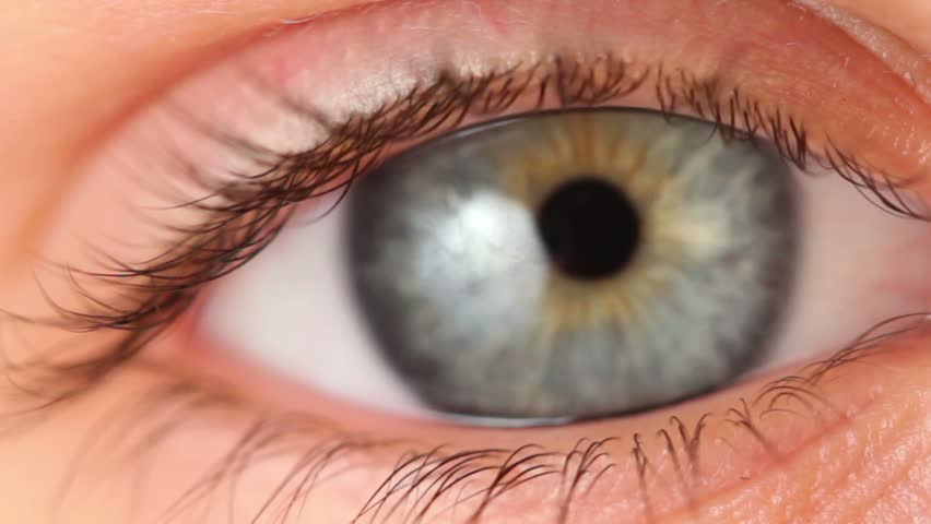 Single eye closeup, eyelid lifts and pupil expands, blinking several times