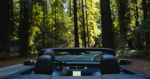 4K driving a convertible through a redwood forest in slow motion. Avenue of the Giants, Humboldt Redwoods State Park, Northern California. Sunlight shines through tall trees as male drives sports car.