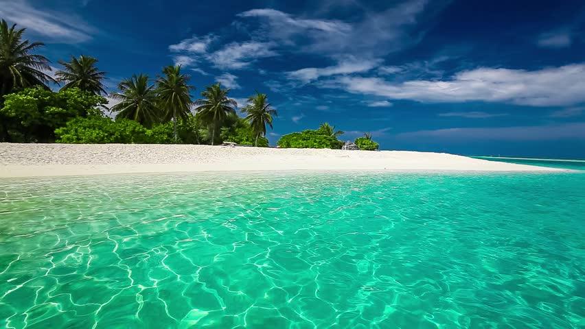 Palm trees on a tropical island white sandy beach  #16357648