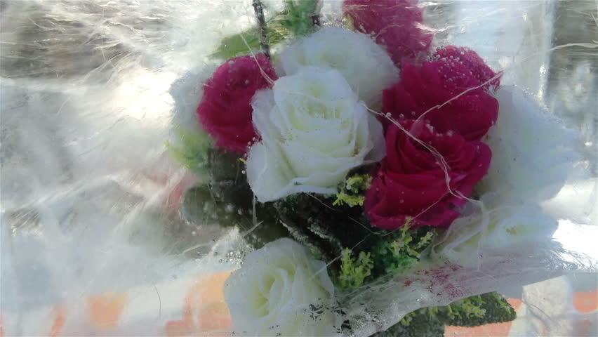 Frozen Flowers #1