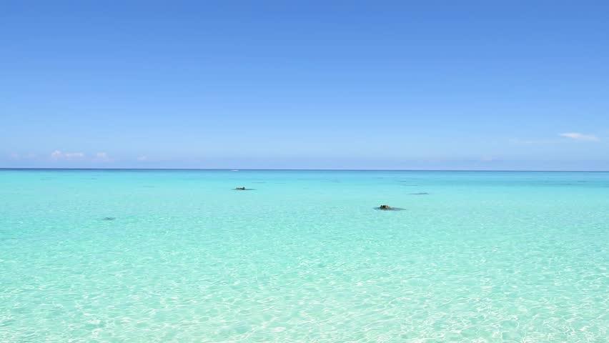 Blue sea, blue sky. Okinawa, Japan, Asia.