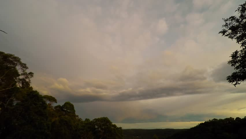 Colorful Golden Autumn Morning Over the Australian Bush | Shutterstock HD Video #17079787