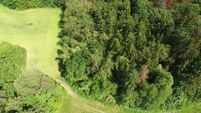 Flight over forest, Aerial View of Czech forest | Shutterstock HD Video #17189359