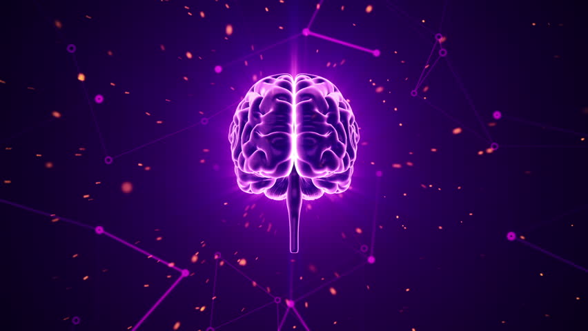 Animation of rotation human brain with flying data around. Animation of seamless loop. | Shutterstock HD Video #17343559