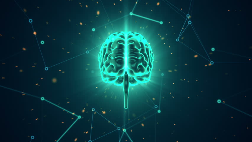 Animation of rotation human brain with flying data around. Animation of seamless loop. | Shutterstock HD Video #17343679