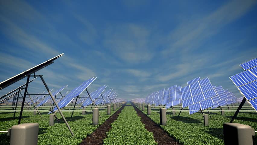 Solar farm in the field