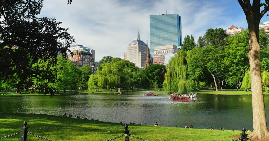 BOSTON, MA - Circa June, 2016 - A summer daytime establishing shot of people enjoying the Swan Boats on the lake in Boston Public Garden.