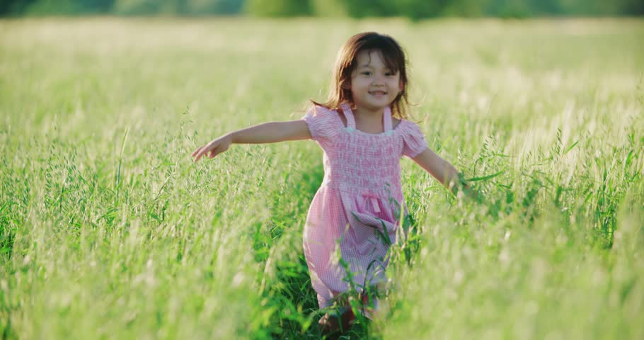 little girl running cross the wheat field footage stock clips