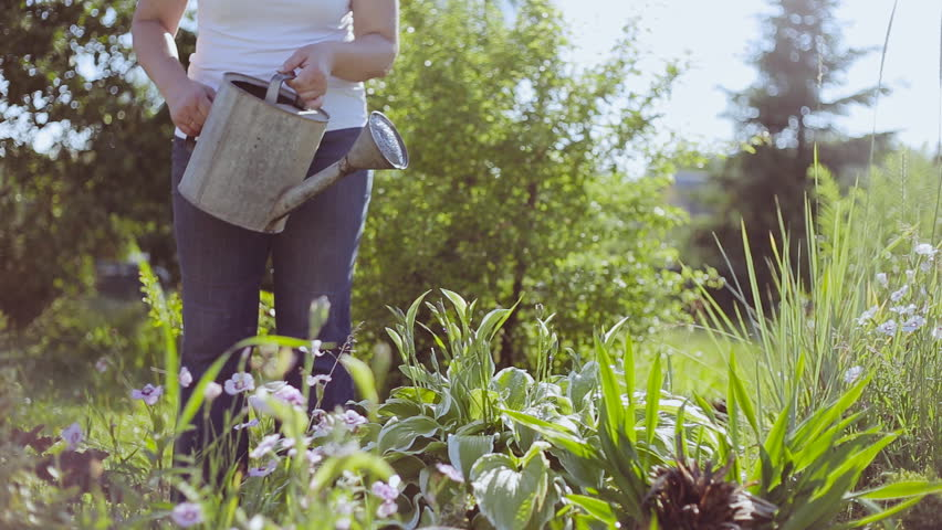 Young woman watering plants with a watering can | Shutterstock HD Video #17586229