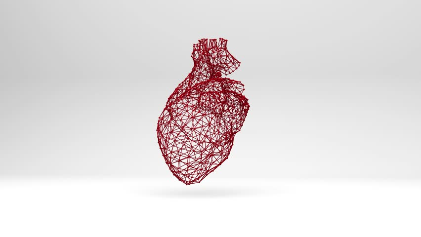 The red mesh heart beats. Computer three-dimensional graphics. Slow rotation