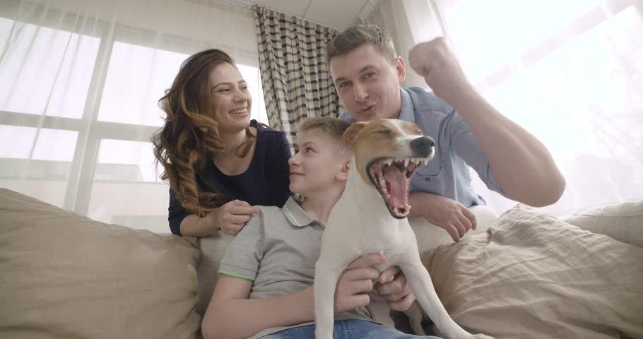 Happy family with cute dog talking to relatives using video chat on laptop at home. Point of view of the computer screen. 4K | Shutterstock HD Video #17837599
