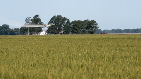 Crop duster in field in Mississippi Delta. Plane swoops low and releases pesticide.Three shots- left to right, turn about and right to left.