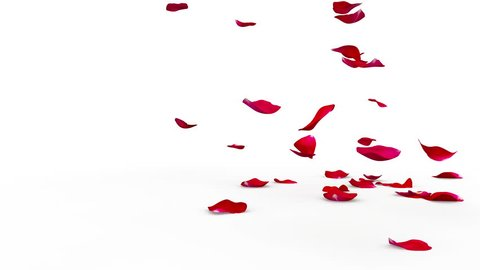 Red rose petals flying on the floor on both sides. Alpha mask included. Quality 4K video